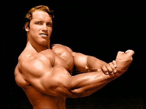 braccio più grosso altro