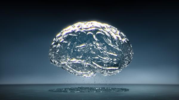 acqua cervello